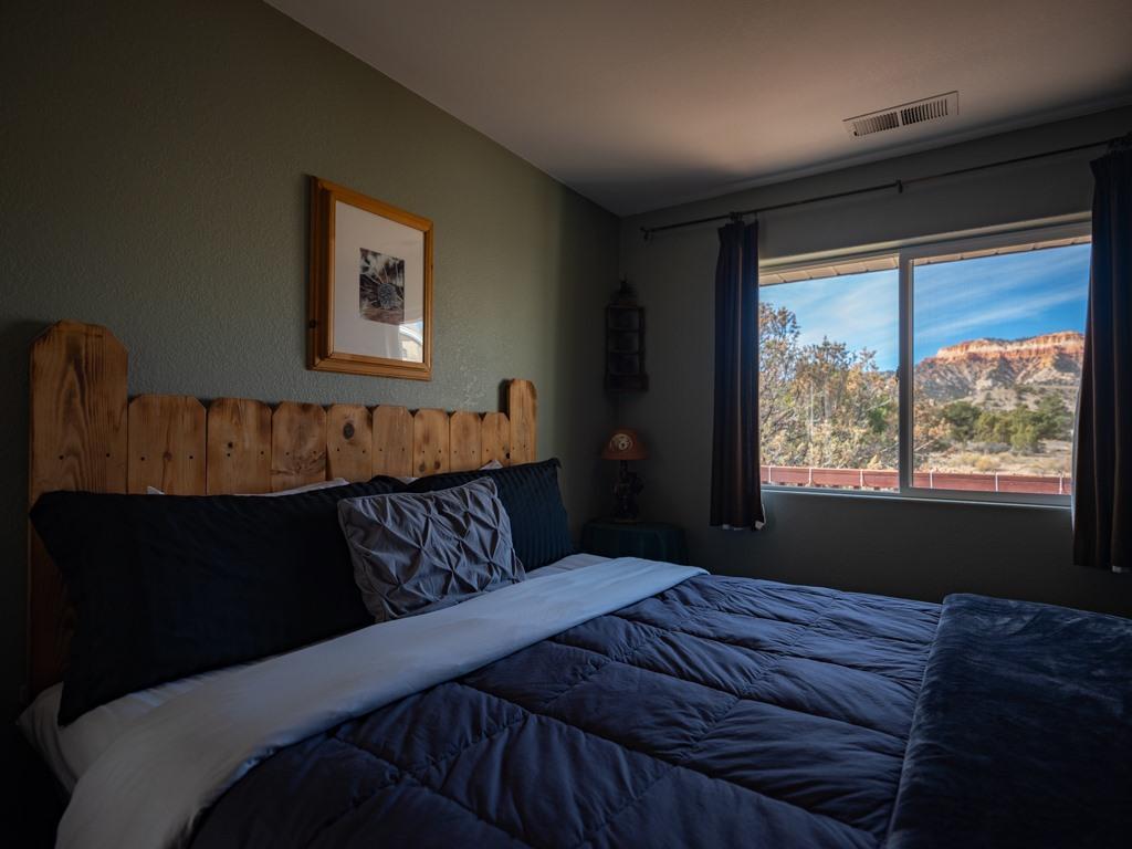 Image for Bristle Cone Pine