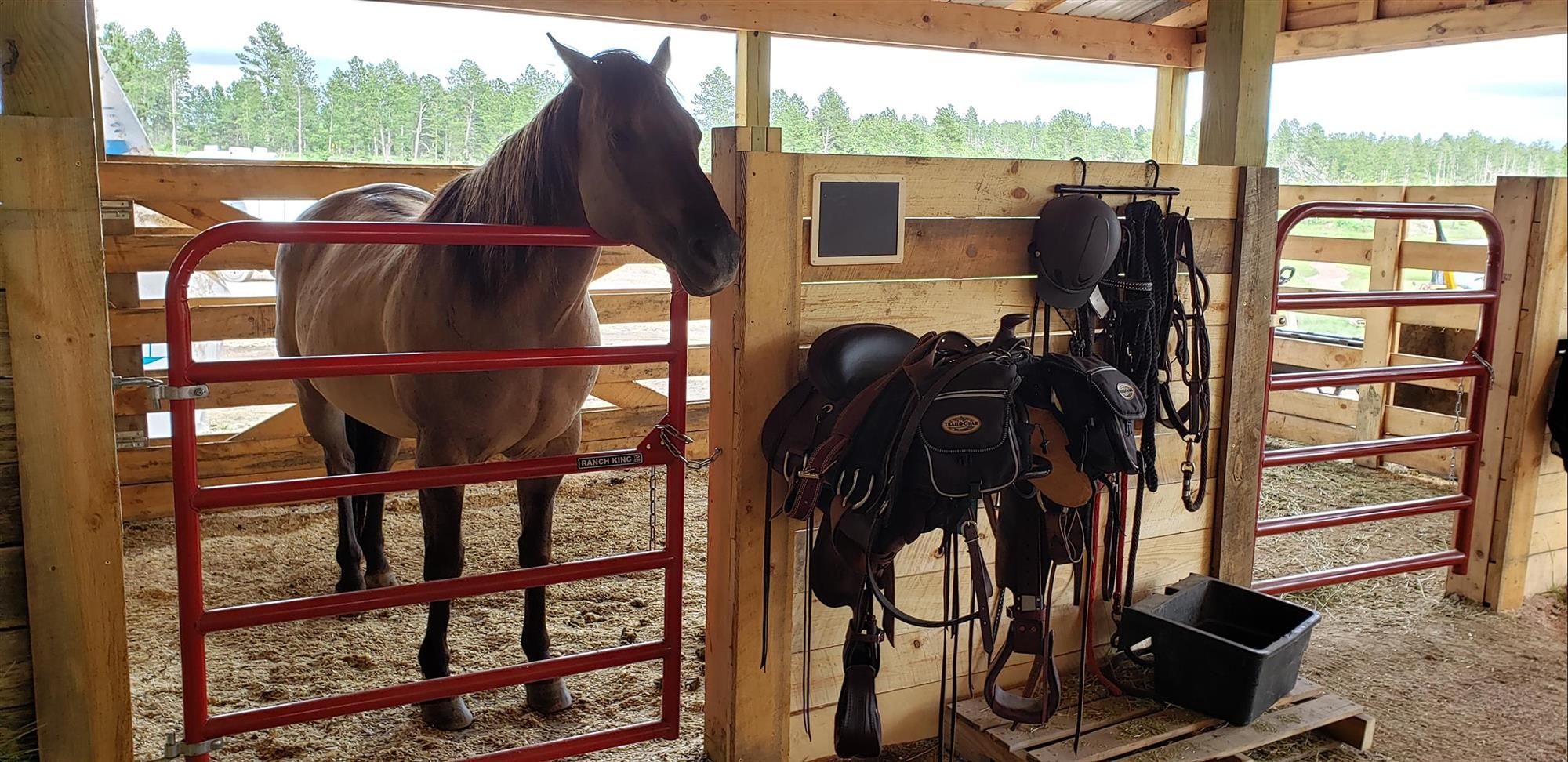 Image for Horse Stall