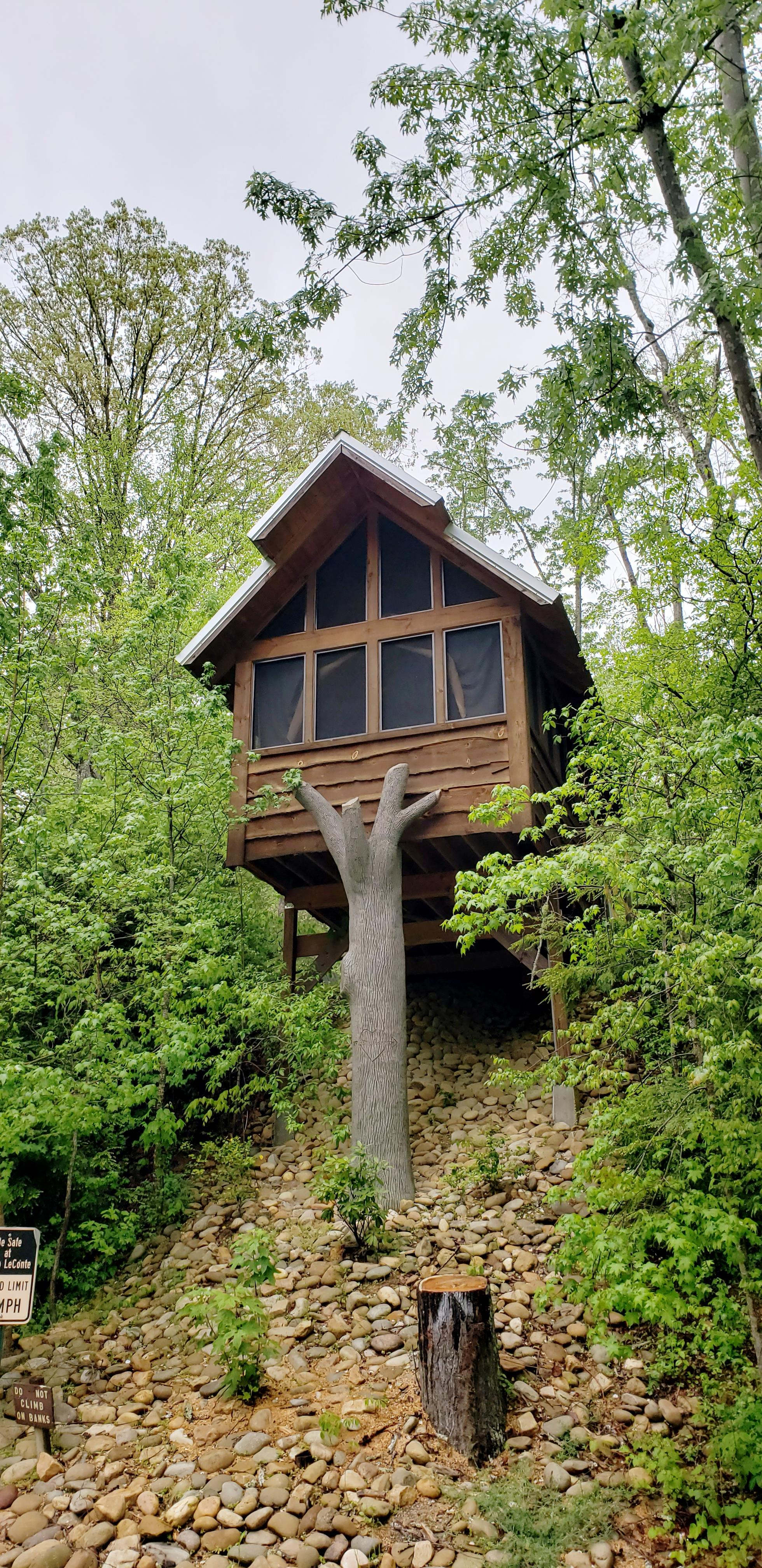 Image for Luxury Tree Houses